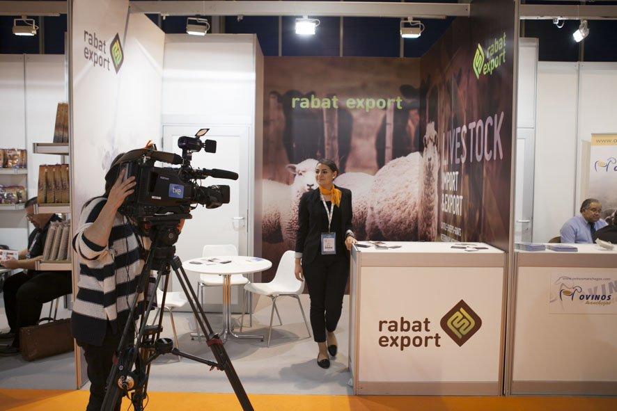 Rabat Export Stand Design